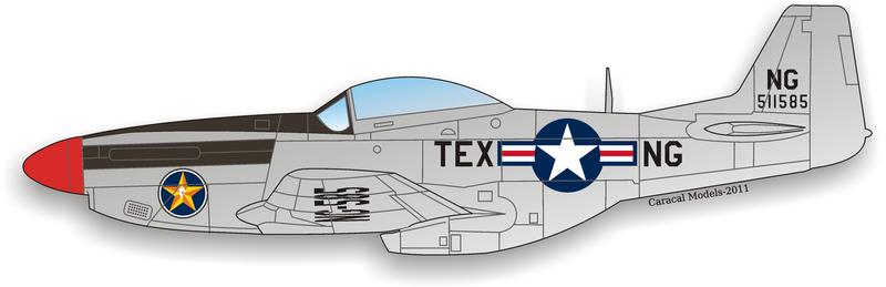 Caracal Decals 1//48 P-51D MUSTANG AIR NATIONAL GUARD UNITS Part 2